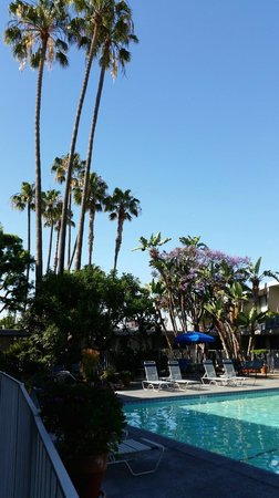 Travelodge Hotel LAX Los Angeles Intl : calif