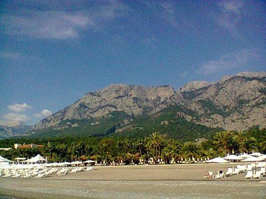 #คลับ เมด ปอลมิเย: Une partie de la plage