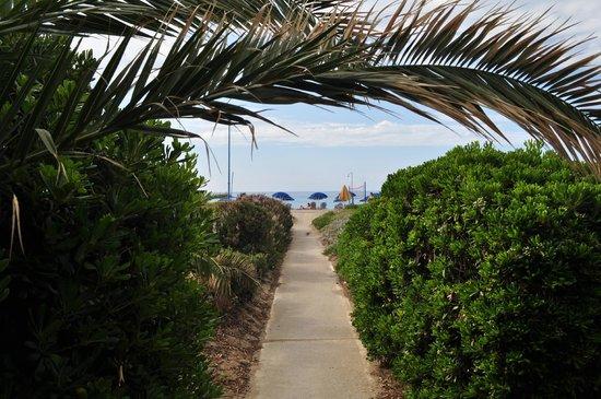 Galeana Beach Hotel: дорога к пляжу