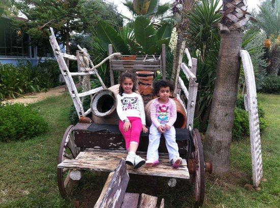 Caretta Beach Hotel: Ancient Cart
