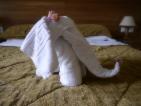 Contessa Hotel : Occasionally, the fresh towels were like sculptures!