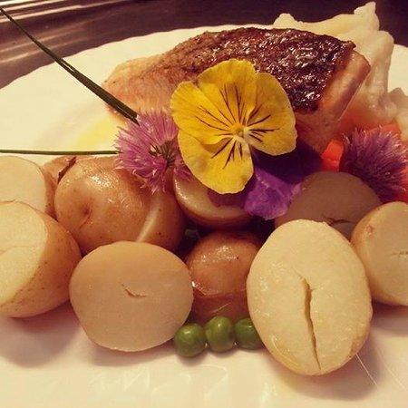 Gordon House Restaurant: *NEW CHEF*  Salmon dish. Homegrown edible flowers