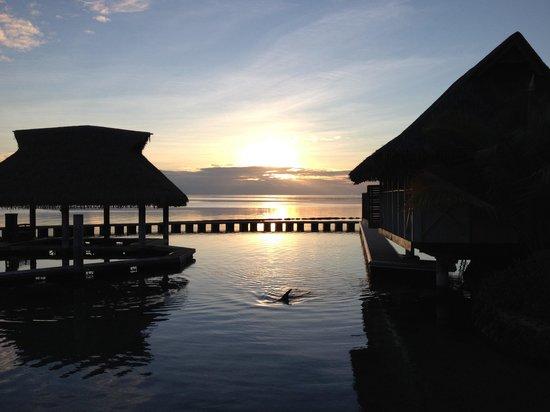 Moorea Dolphin Center: Le lever du soleil
