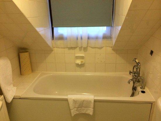 Centennial Hotel: A bath/shower in the roof