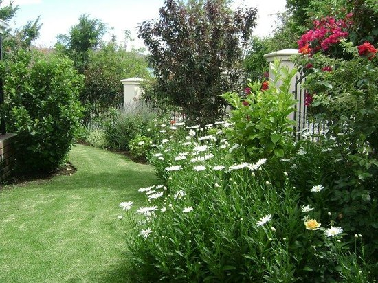 Somerset Lodge: The beautiful garden area