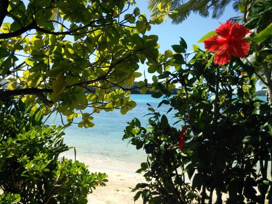 Navutu Stars Fiji Hotel & Resort: Looking out from the lawn area around Bure 3.