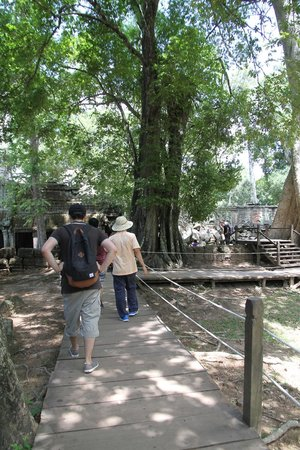 David Angkor Guide - Private Tours: Temple tour with David