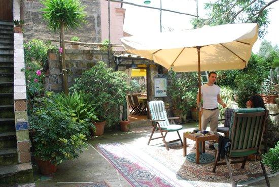 Orchid Corner B&B: chiacchiere e relax