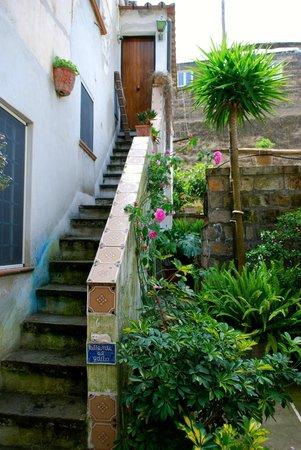 Orchid Corner B&B: dal giardino alle camere