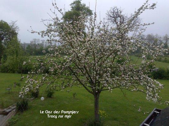 Clos des Pommiers: VUE DE LA CHAMBRE