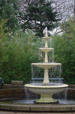 The Botanical Gardens: The lovely fountain