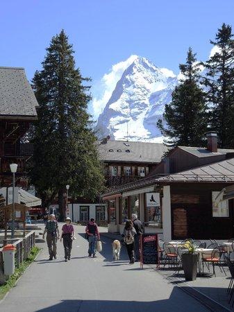 Hotel Alpina: Murren