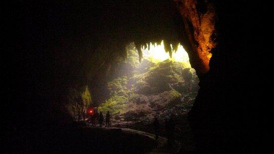 Parque de las Cavernas del Rio Camuy : cave opening (from inside)