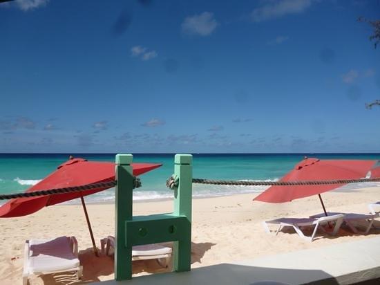 Coral Mist Beach Hotel: Blick von unserer Terrasse