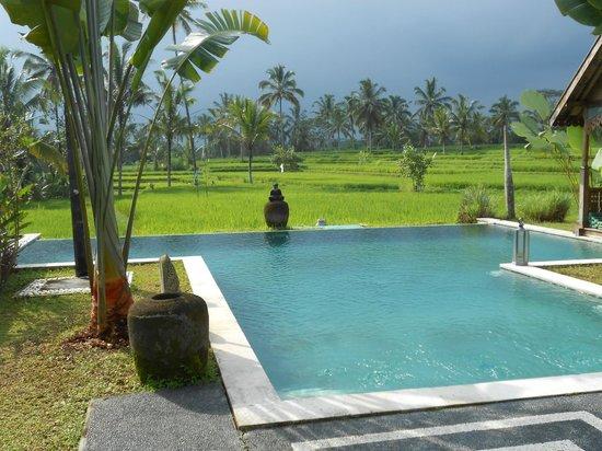 Hati Padi Cottages: belle vue sur rizière