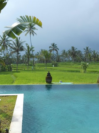 Hati Padi Cottages: piscine