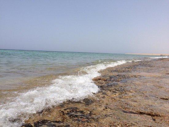 Fantazia Resort : Splendido mare