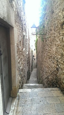 Patronat Call de Girona: Another narrow street of The Call