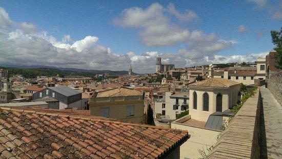 Paseo de la Muralla (Passeig de la Muralla): View of the cathedral from the walls