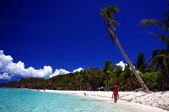 Coron Westown Resort : Malcapuya Island beach, paradise