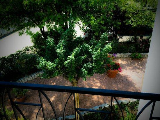 Don Carlos Bed & Breakfast: Vista Davanzale