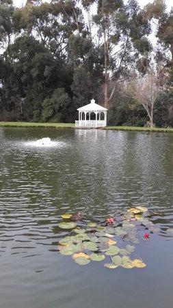 Holden Manz Country House : Beautiful Garden