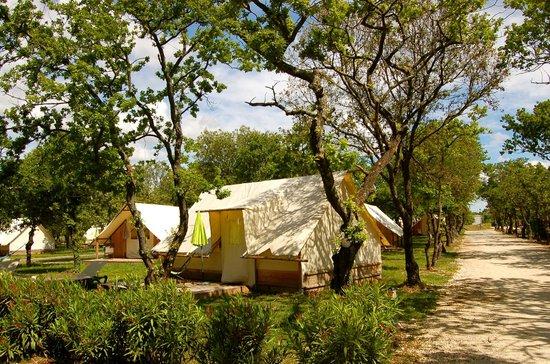 Lodges en Provence: lodges toile / tente