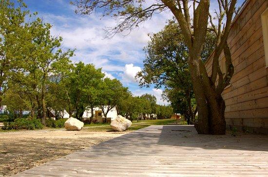 Lodges en Provence : parc