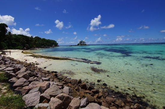 Au Fond de Mer View: Anse Royale
