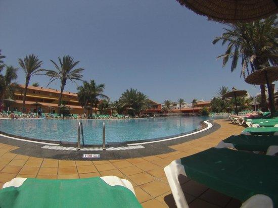 Oasis Village: Magnifique piscine eau de mer.