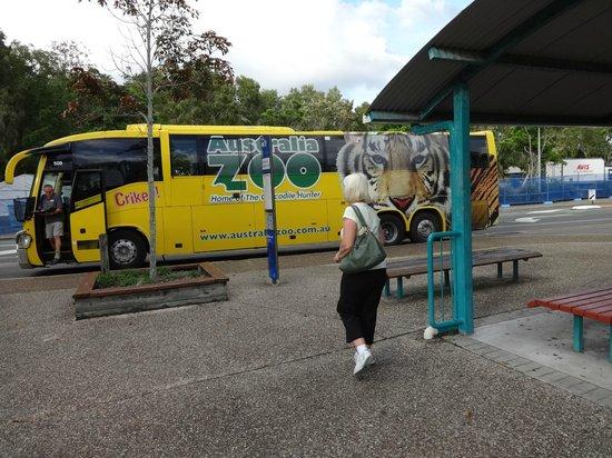 Australia Zoo: Tour Bus