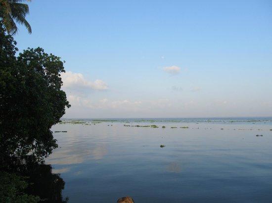 Abad Whispering Palms Lake Resort: Calm Balm!
