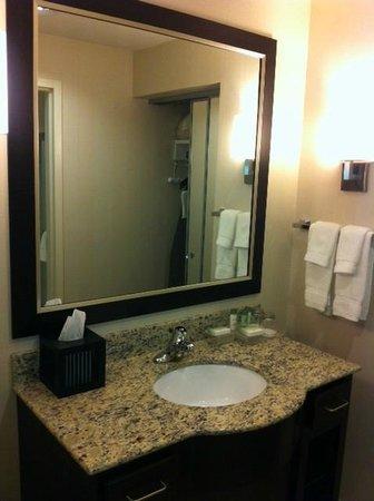 Homewood Suites by Hilton Doylestown: Bathroom vanity