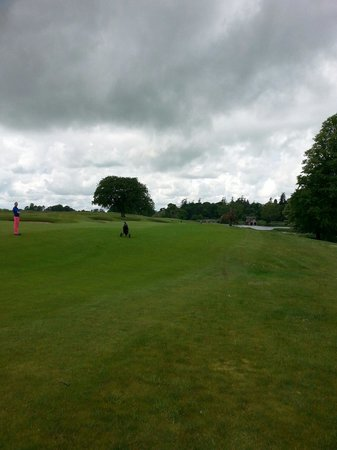 Carton House Golf Club: Looking down the 18th fairway.  Montgomery course.
