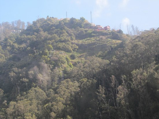 Teléferico de Funchal: Funchal - La funivia - Visione dalla cabina
