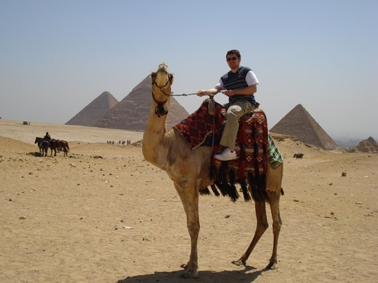 Musée égyptien du Caire : Me on a camel near the pyramids