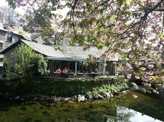 Grasmere Tea Gardens : From across the river