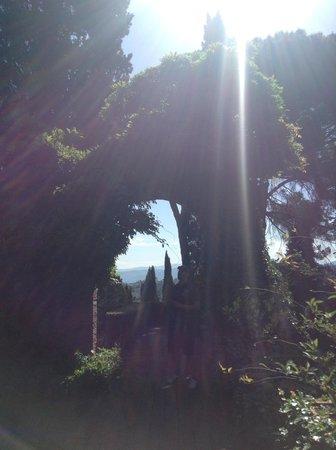 Torre di Bellosguardo : Magical gardens
