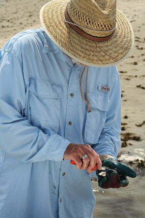 Chincoteague Cruises & Nature Tours: Charlie shucking oyster for immediate consumption!