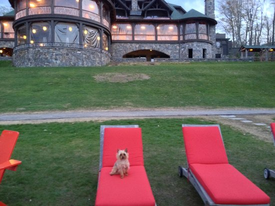 Lake Placid Lodge : Pup relaxing!