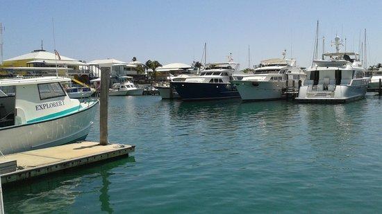 Viva Wyndham Fortuna Beach: Sabor Restaurant (Marina View)