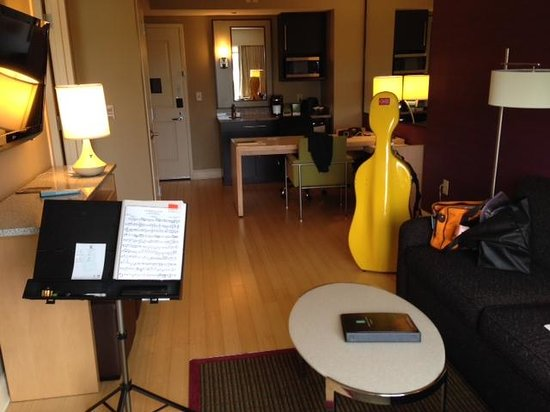 Embassy Suites by Hilton Raleigh - Durham Airport/Brier Creek: Living room