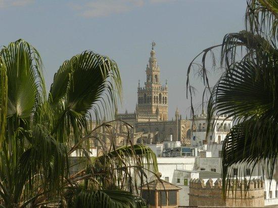 Torre del Oro: Вид на Хиральду