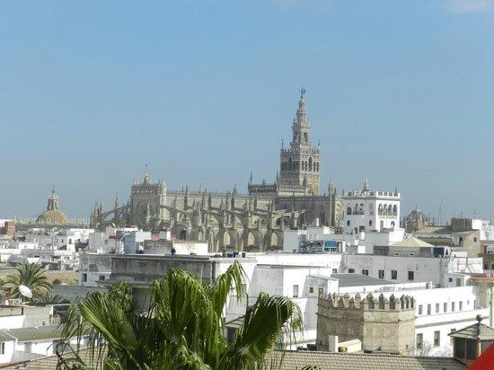 Torre del Oro: Вид с башни на Севильский собор