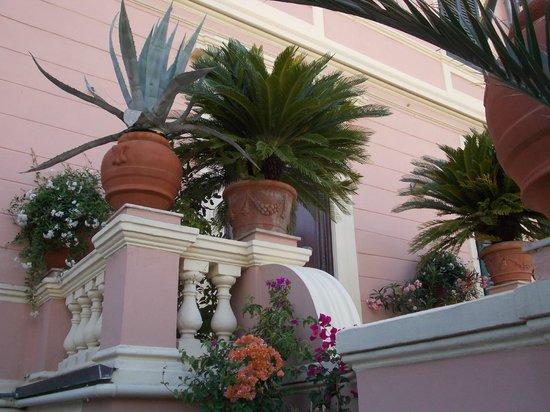Hotel Italia: giardino