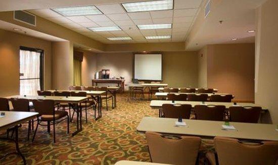 Hampton Inn Jacksonville Downtown I-95 : Meeting Room