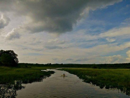 White Memorial Conservation Center: Paddling Little Pond