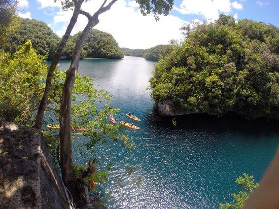 Palau Pacific Resort: Excursion en kayak à Nikko Bay, inoubliable