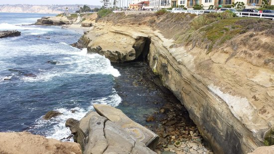 La Jolla Caves: Just one of many photos we took...