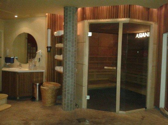 Le Parc Hotel Restaurant & Spa: Le sauna